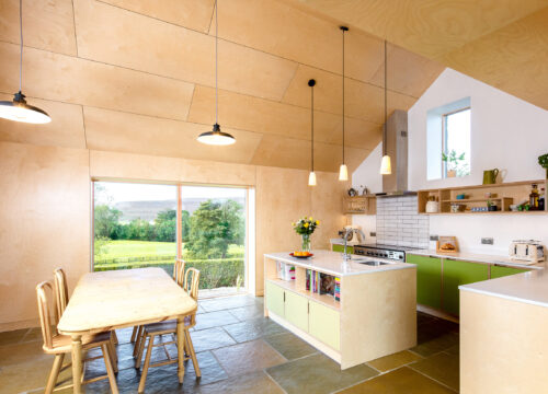 harper-perry-architects-housing-barn-westerdale-north-yorkshire-interior-plywood-kitchen-island